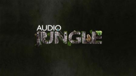 【Audiojungle】19316057_