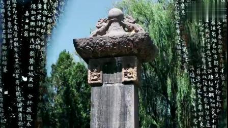 """【郑州,一个都说""""中""""的地方!郑州城市宣传片[心]】郑州有多美?无论你是老郑州人,还是初来乍到,都能通过下面这段短片领略郑州这座城市的美。7..."""