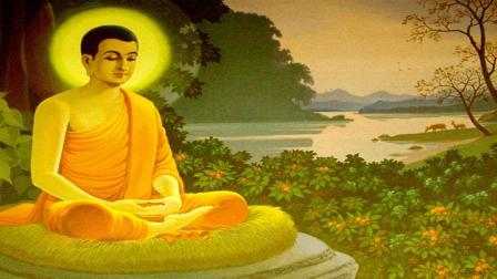1579能调控情绪的人,才能控制自己的人生。佛教教育短片 欢迎转发 功德无量(深信因果 常念弥陀 消灾解难 往生极乐)阿弥陀佛