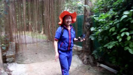 海南——热带野生动植物园