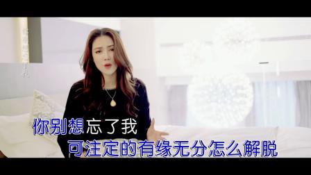 唐艺-你别想忘了我(原版)红日蓝月KTV推介