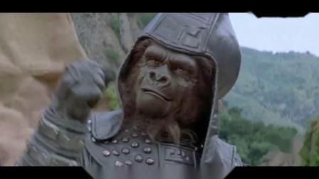 电影:未来猩猩统治地球,人类退化成低等生物,沦为实验的小白鼠
