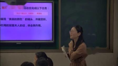 9美丽的颜色曾老师三等奖初中语文人教部编版八年级上学期 F2578