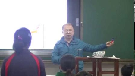 1.磁现象曹老师特等奖初中物理教科版九年级上学期 F11859