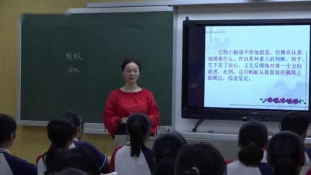 4蚂蚁夏老师一等奖初中语文北师大版新八年级上学期 F12431