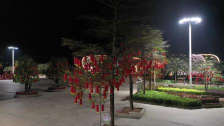苍海新区:越夜越美丽