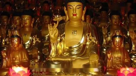 """佛教教育短片 你看懂了吗?20个佛教经典故事,全部看懂你就是""""开悟人""""!_超清"""