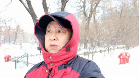 哈尔滨的又一场雪,太平公园雪中的记忆