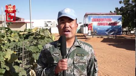 【官兵们给您拜年啦!和平卫士们的坚守和思念,致敬!】对正在海外执行维和任务的中国第15批赴苏丹达尔富尔维和工兵分队的官兵们来说,鼠年春节,是...