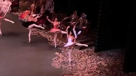2020.1.21 莫大 堂吉诃德 片段 Vladislav Lantratov, Eleonora Sevenard