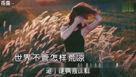 孙露--我最亲爱的--女歌手--国语--MTV--大陆--消音--高清--1--2