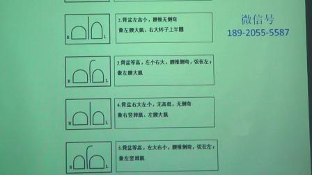 郭振存治疗腰椎讲课视频片段8