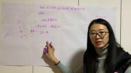 张薇+初中数学