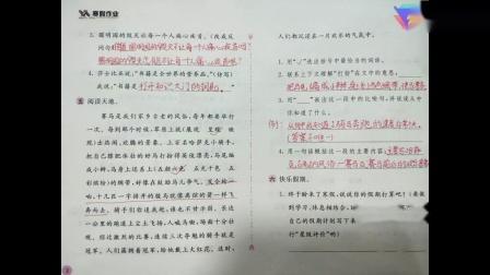 【阜阳美雅特小学】五年级上册寒假作业指导