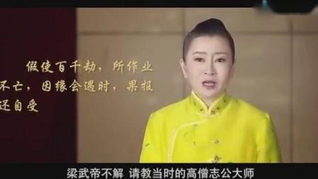 佛学视频  关于因果_标清