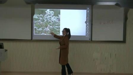 《春夏秋冬》第一课时(授课教师:隆林县新州一小 罗丽牡) - UMU互动学习平台