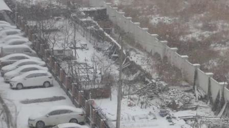 记录片2020年正月第二场雪