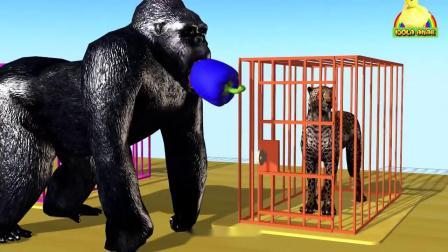 亲子幼儿教学大猩猩、狮子、老虎、猎豹、马