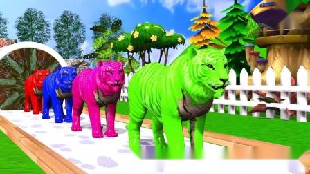亲子幼儿教育大猩猩、狗、狮子、猫、老虎、猎豹、大象、狗熊