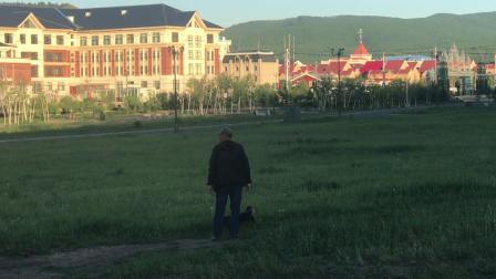 内蒙古-兴安盟-阿尔山市区-住宿草原假日门口草坪-小雾