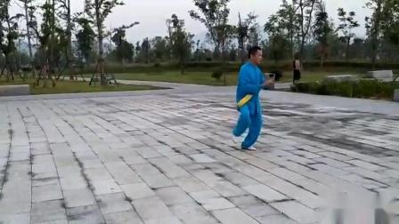 宁国市弘睿太极拳队程师傅演炼32式太极剑 04:01