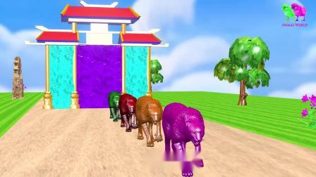 亲子幼儿教育奶牛、捷豹、骆驼、狗熊、狮子、老虎、大象、鳄鱼