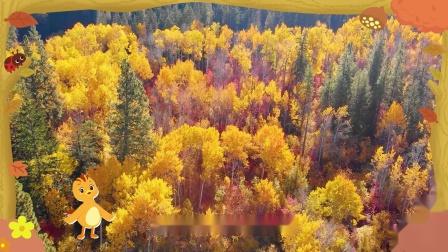 萌鸡小队趣自然为什么绿绿的叶子会变黄?