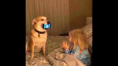 仙剑奇侠传4里全是舔狗?你玩懂了吗