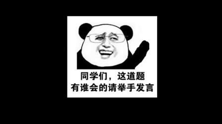 【半佛】你春节抢到票了吗?12306也很绝望!
