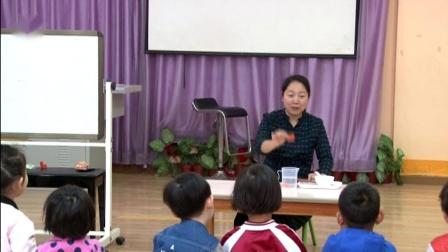 小班科学活动《奇怪的胡萝卜》执教:赵静(郑州市教工幼儿园)