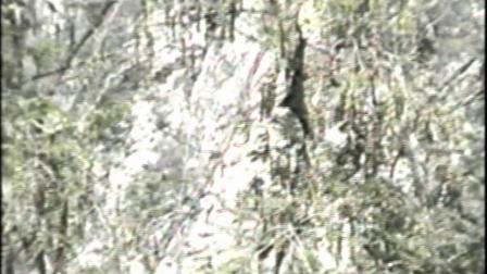 冰峪沟两日游2002年下集