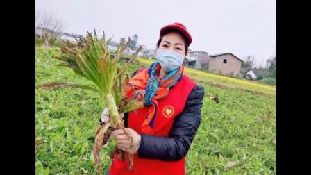 """阆中菜农20吨新鲜蔬菜为""""疫线战士""""助力"""