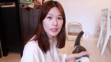 让猫咪一秒入睡?!挑战韩国猫咪催眠神曲【CHU! Liin】