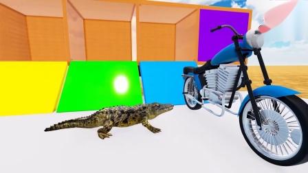 一起看看动物摩托车乐园里有什么有趣的游戏.mp4