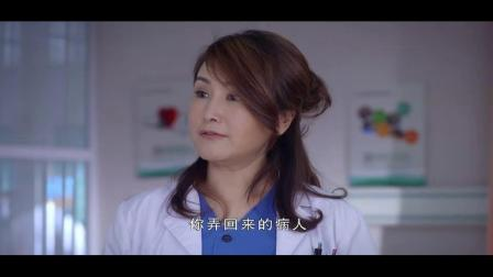 急诊室故事(无寒版)27