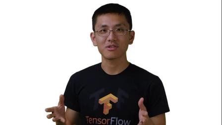 Tensor Processing Units: History and Hardware (AI