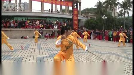 2013湛江年会红樱展翅