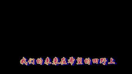 北新区喜洋洋广场舞《在希望的田野上》字幕文件下载可以在会声会影中应用