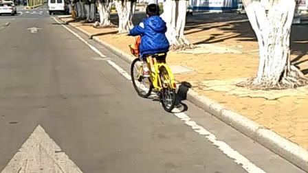 会踩单车上路了