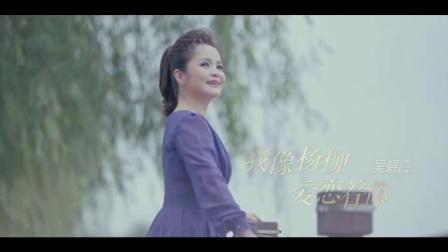 《我像杨柳爱恋着你》