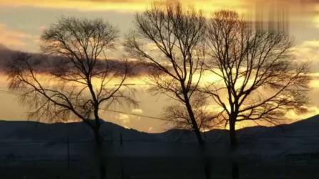 魂牵梦萦大草原