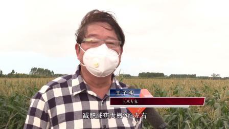 湛江:农技专家田头录视频 绿色种植网上推广