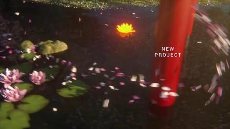AE模板-春天花瓣飞舞荷花日本樱花节宣传片头动画