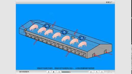 养殖猪舍通风方式公益课