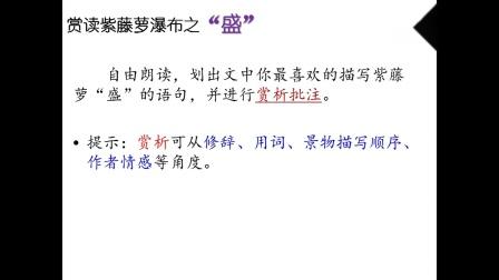 3月9日上午 语文 七年级 紫藤萝瀑布(1) 讲课老师:包徐音 桐庐县三合初中