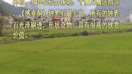 马山县永州镇胜利村桐康《感垂洞》图片欣赏