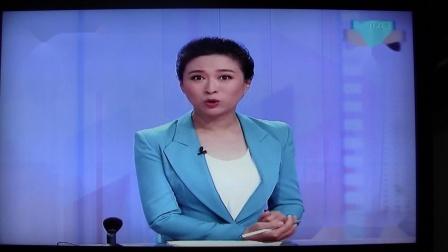 BTV生活东方白鹳