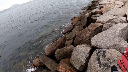 矶钓   2020.03.07 回到防波堤,继续练习全游动