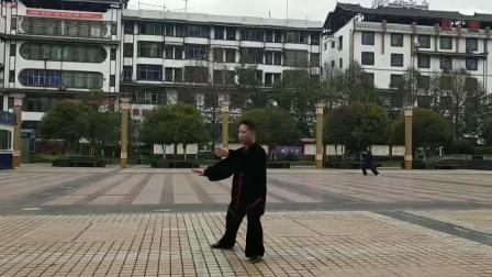 贺斌太极文武演练传统杨式八十五式