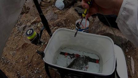 矶钓小工具   个人用过效率最高的解鈎器